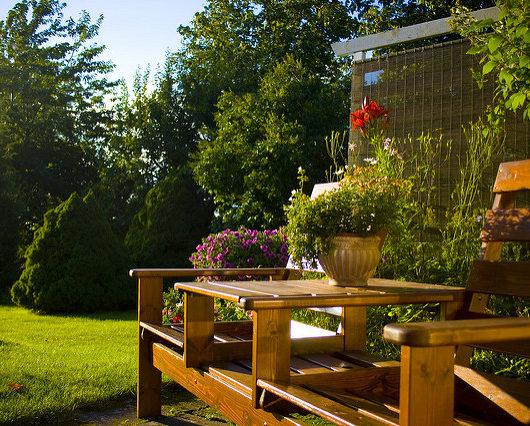backyard designing tips